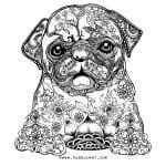 раскраска собака для детей распечатать