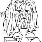 раскраска собака сложная (10)