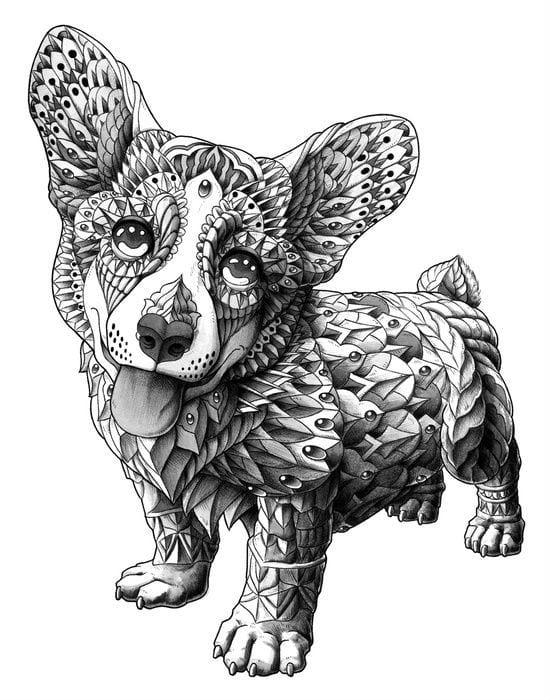 raskraska-sobaka-slozhnaja-11 раскраска собака сложная (12)