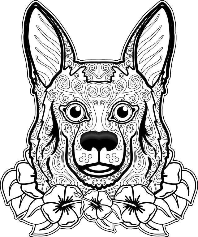 raskraska-sobaka-slozhnaja-6 раскраска собака сложная (7)