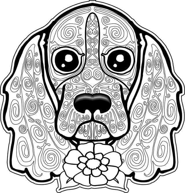 раскраска собака сложная (8)