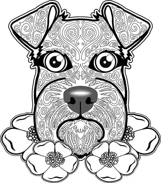 раскраска собака сложная (9)