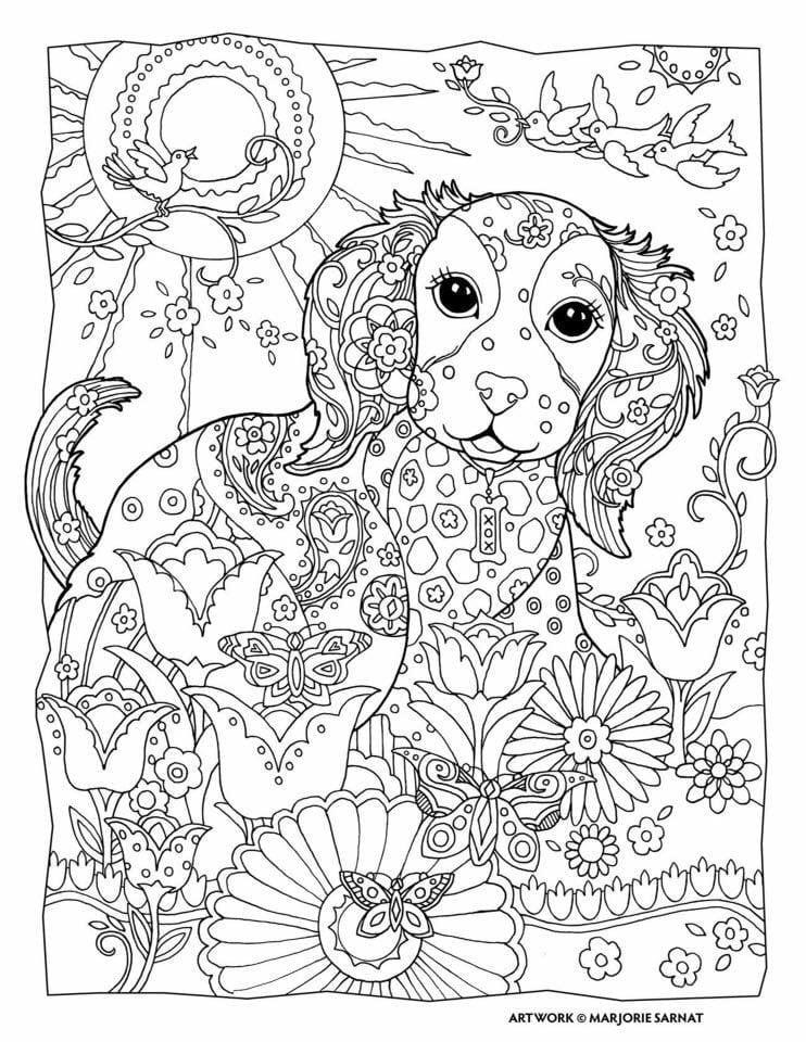 raskraska-sobaka раскраска собака для детей 2 3 лет