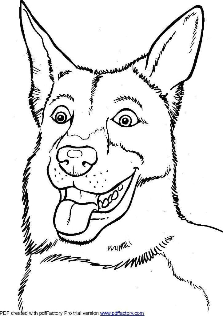 раскраски антистресс собаки рисовака
