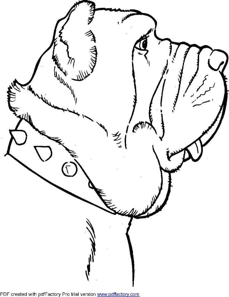 raskraski-antistress-sobaki-v-horoshem-kachestve раскраски антистресс собаки распечатать бесплатно формат а4