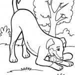 раскраски антистресс животные собаки