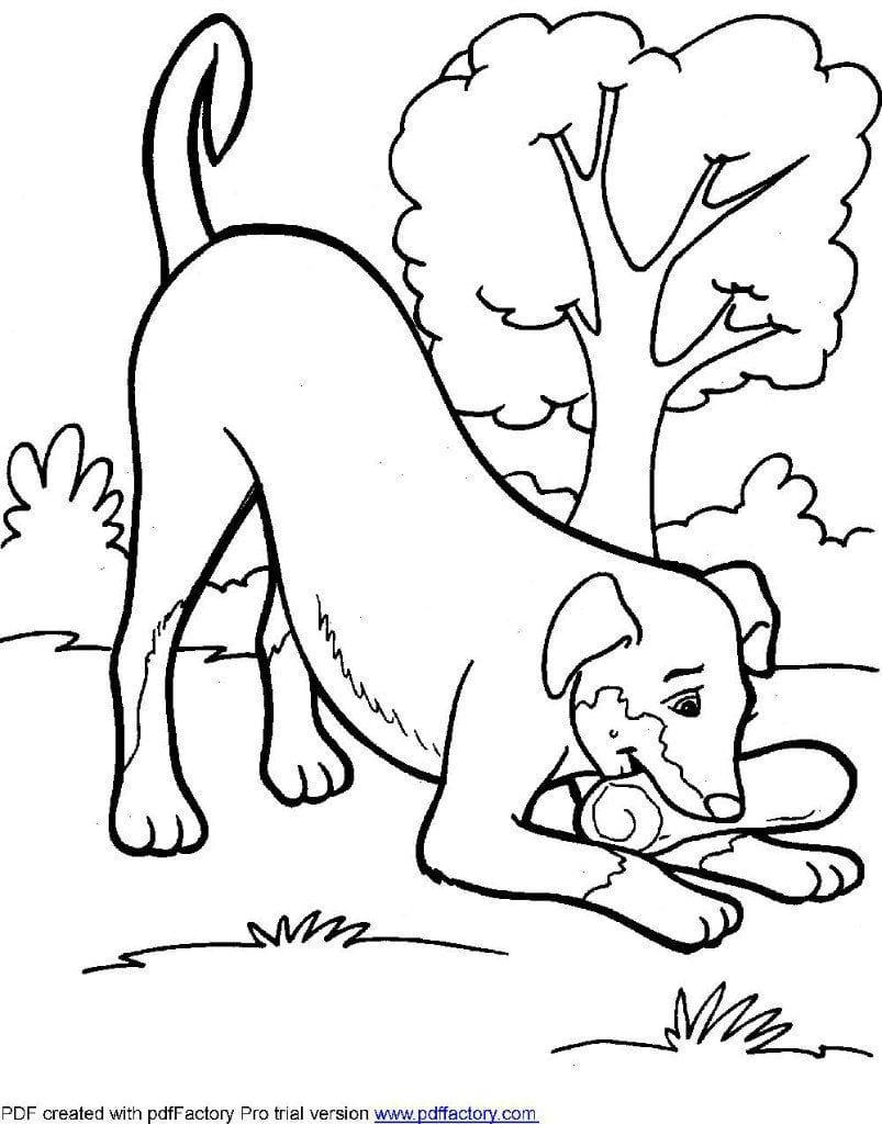 раскраски антистресс животные собаки - Рисовака