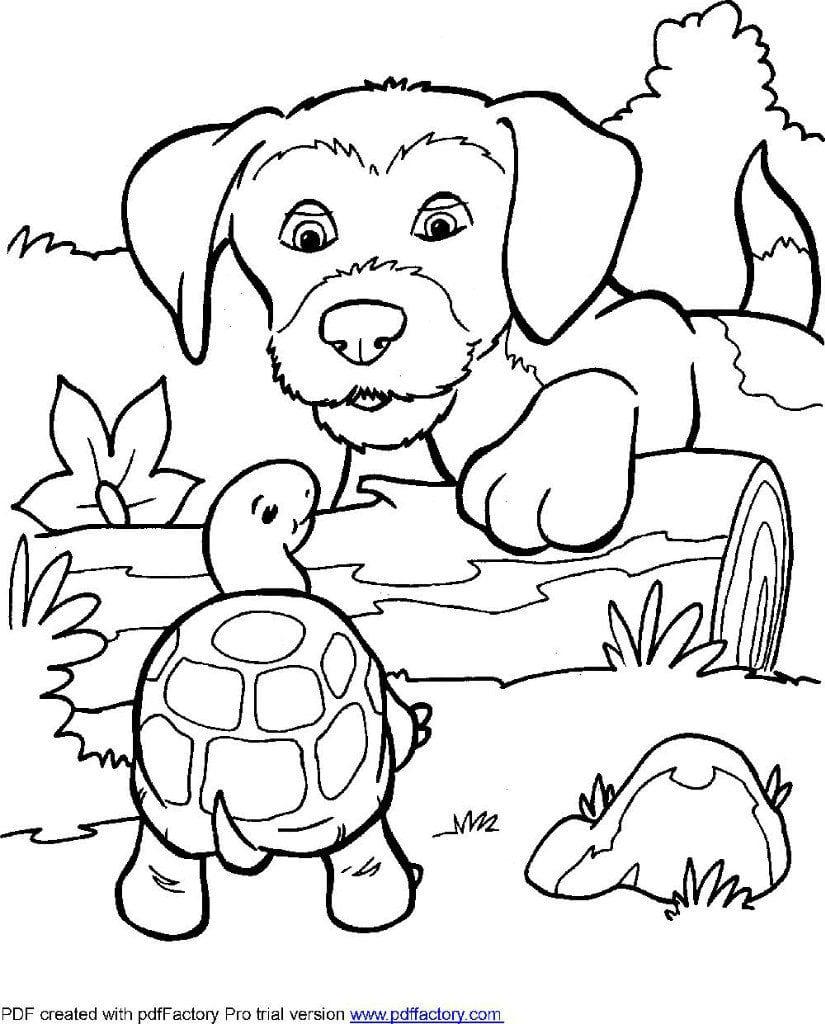 раскраски для детей собаки распечатать бесплатно - Рисовака