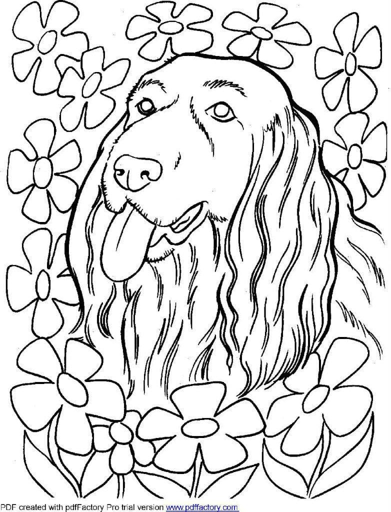 раскраски для девочек собаки