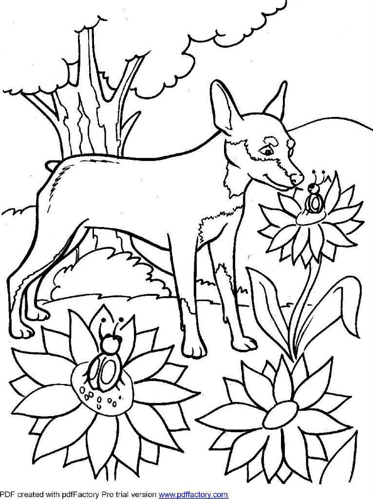 раскраски для девочек животные собаки