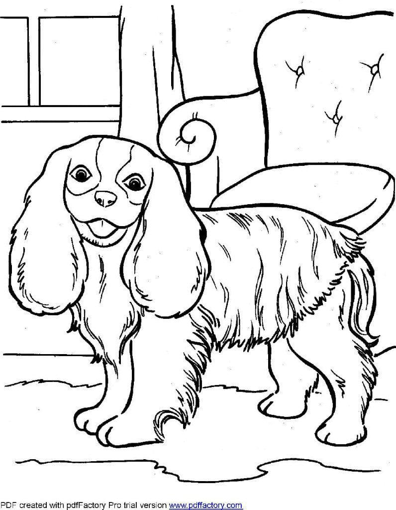 raskraski-dlja-malchikov-sobaki раскраски для мальчиков собаки