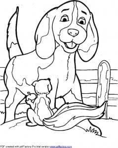 раскраски про породы собак