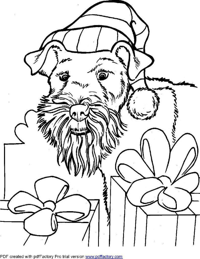 раскраски про собак распечатать бесплатно