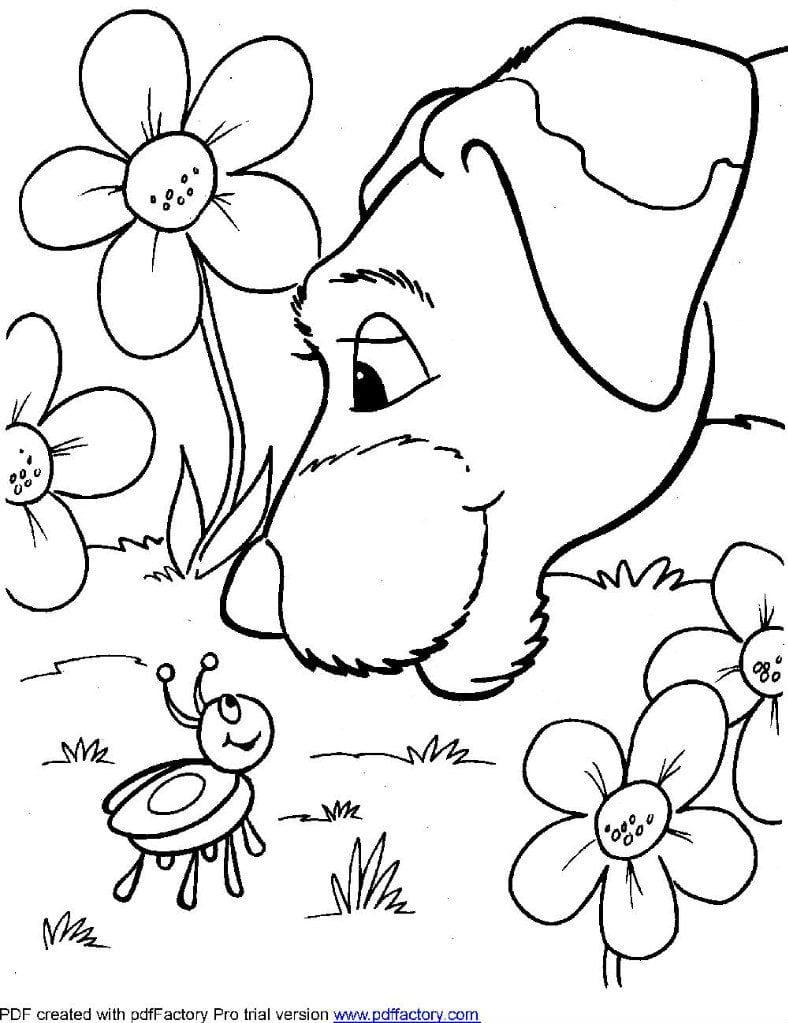 raskraski-pro-sobak-raspechatat-besplatno раскраски про собак