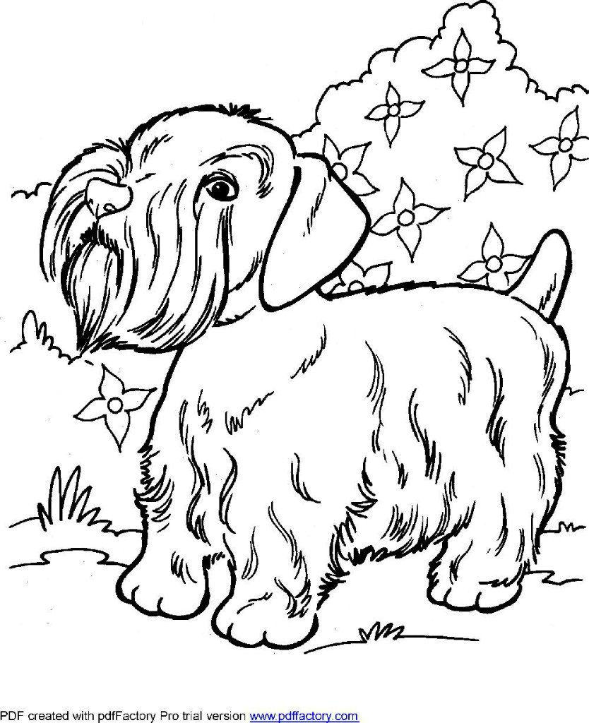 раскраски с собаками печать - Рисовака