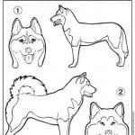 раскраски собак прикольные
