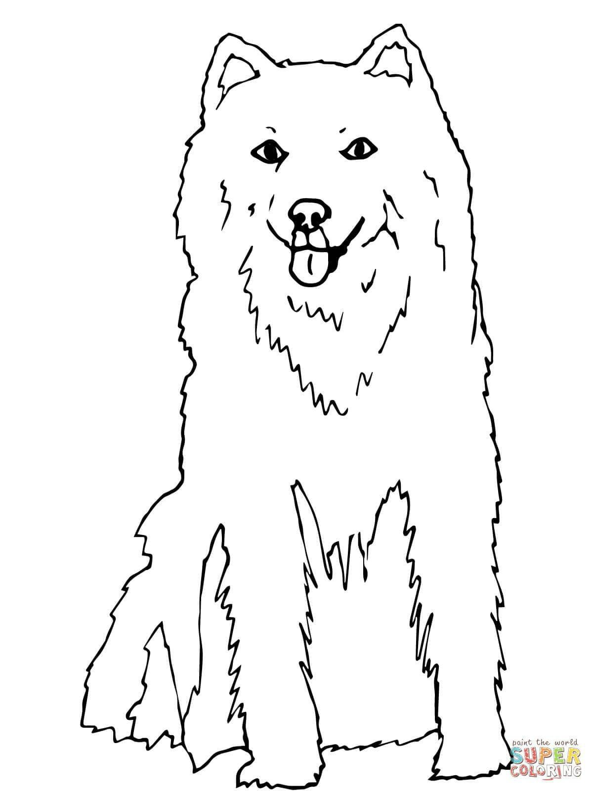 раскраску собаки напечатать