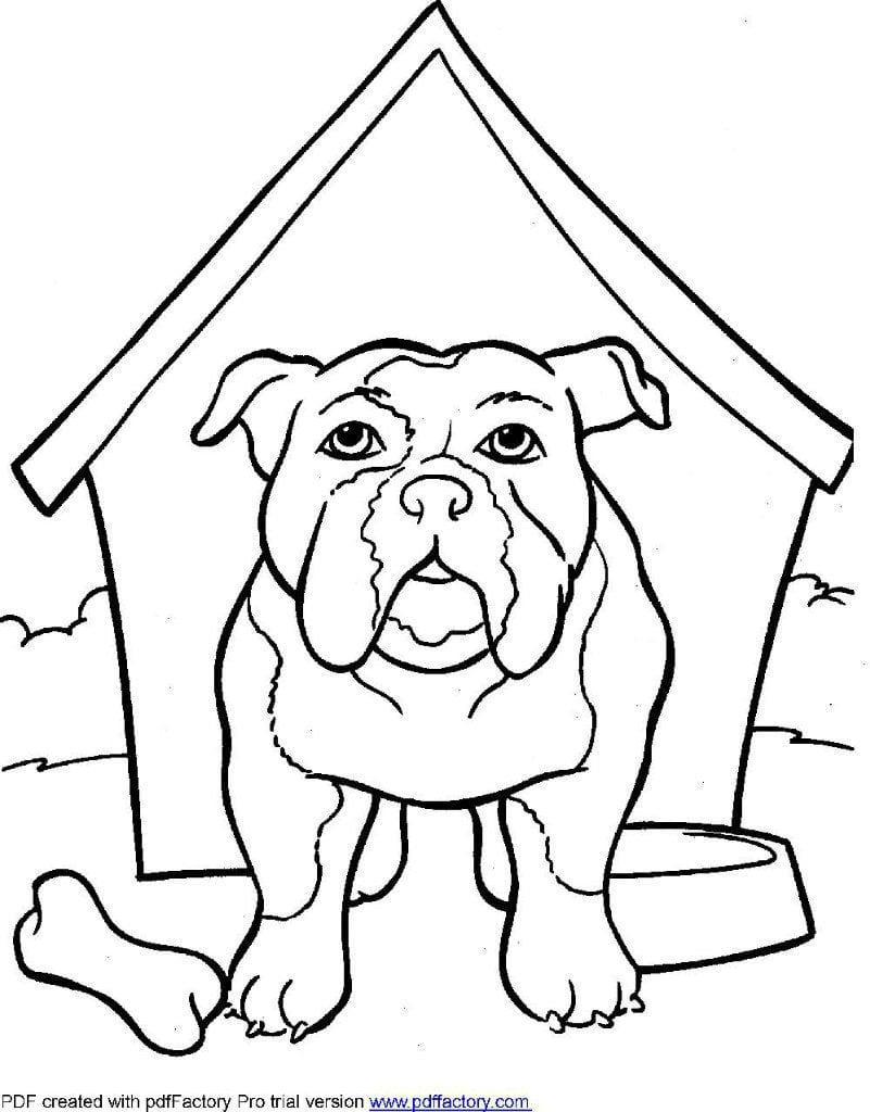 raspechatat-raskraski-dlja-devochek-sobaki-i распечатать раскраски для девочек собаки и щенки