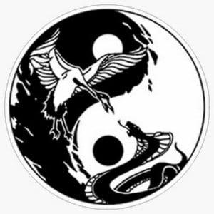 skachat-in-jan-risunok-300x300 Инь и Янь