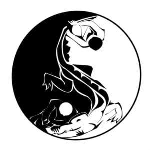skachat-kartinku-in-jan-300x300 Инь и Янь