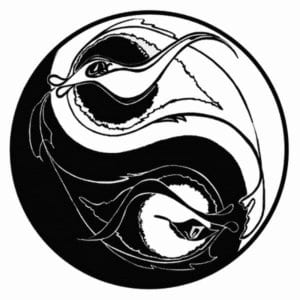 skachat-znak-in-jan-kartinki-300x300 Инь и Янь
