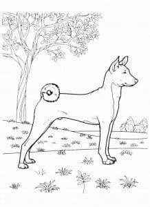 собака раскраска для малышей