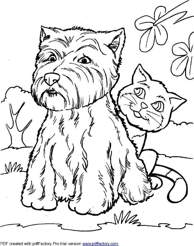 sobaki-dlja-raskraski-izobrazhenie собаки для раскраски изображение