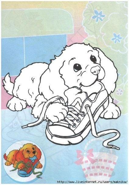 собаки раскраска обычная распечатать