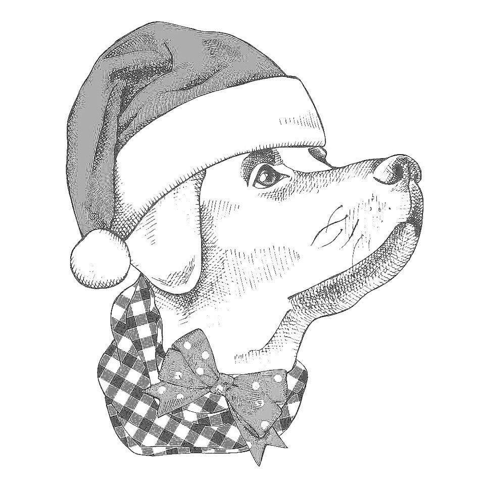 собаки раскраски распечатать картинки - Рисовака