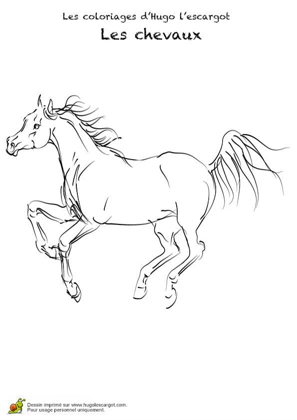 для раскраски год лошади рисунки