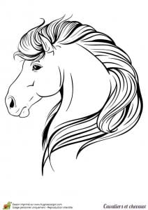 лошадей раскраски про