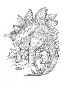 Стегозавр раскраска