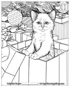 А4 кошка картинка раскраска