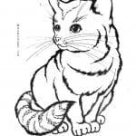А4 принцесса кошка раскраска