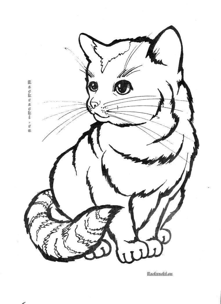 А4 принцесса кошка раскраска - Рисовака