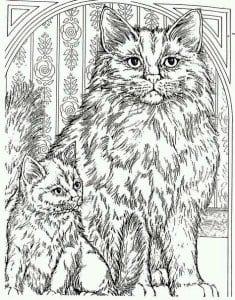 А4 раскраска красивая кошка