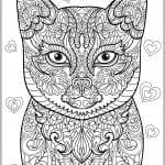 для детей 2 3 лет раскраска кошка