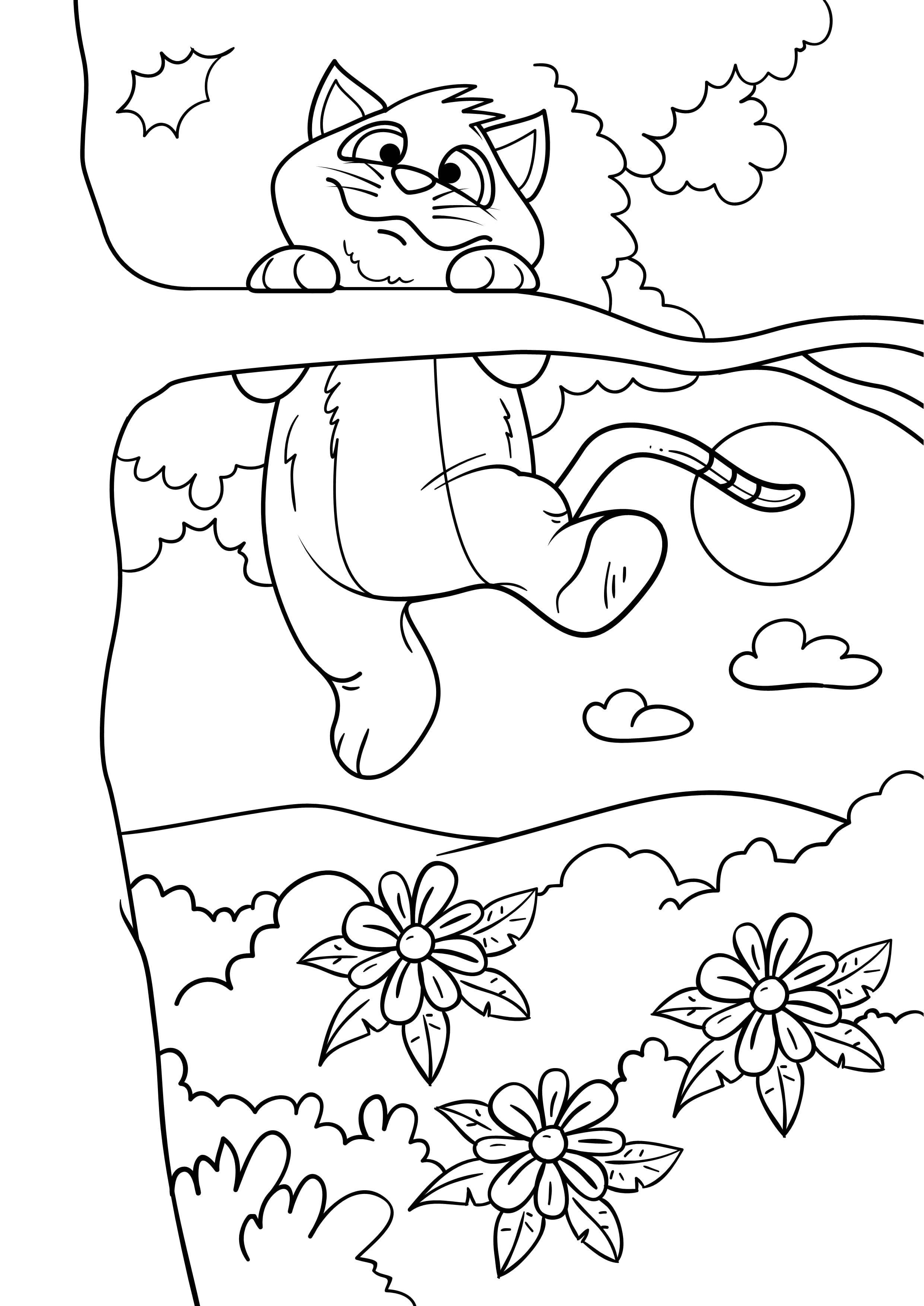 для девочек онлайн бесплатно раскраска кошки - Рисовака