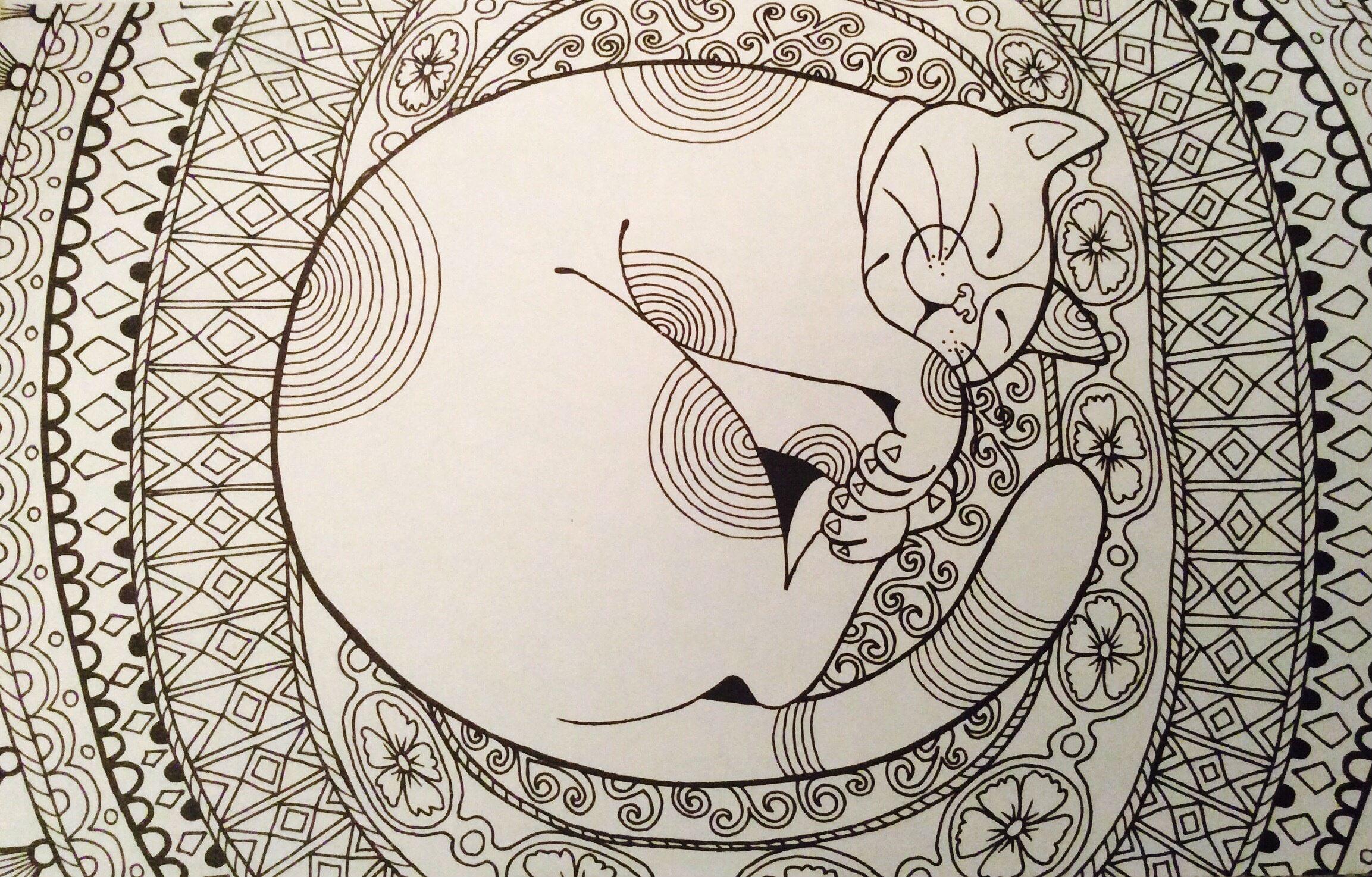 картинка кошки раскраска распечатать - Рисовака