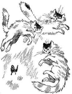 картинки антистресс раскраски кошки