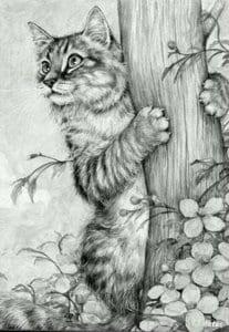 кошка для детей 2 3 лет раскраска