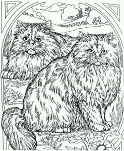 кошка раскраска для детей распечатать А4