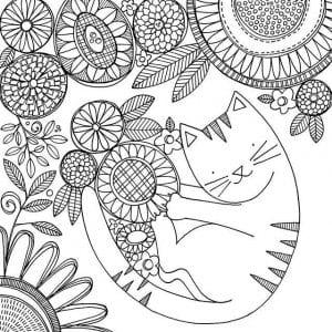 кошка раскраска для малышей А4