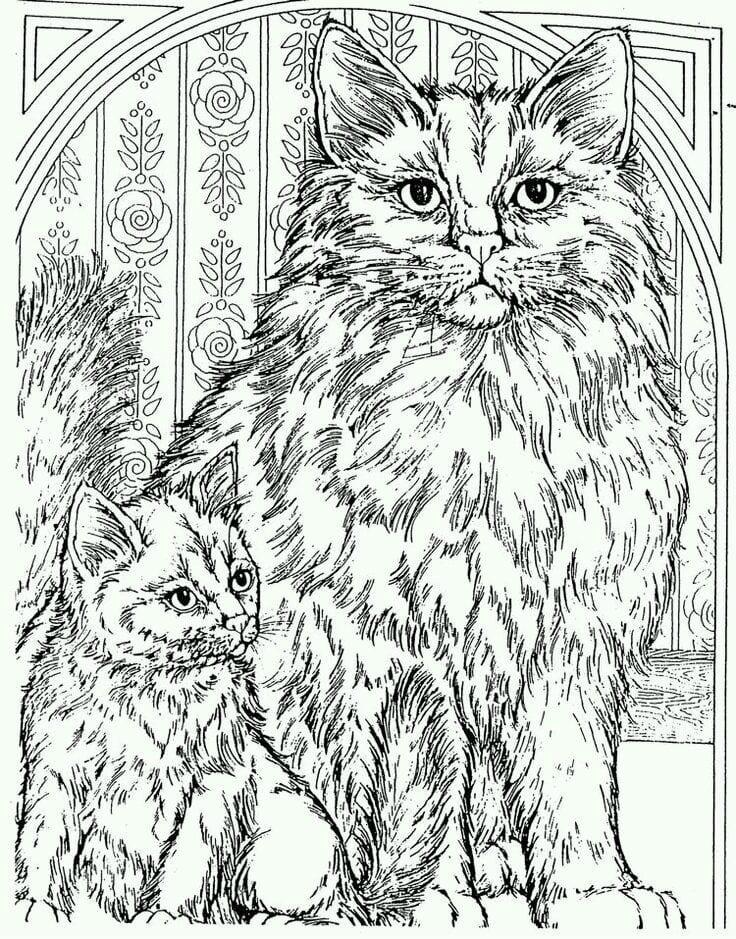 кошка раскраска для детей - Рисовака
