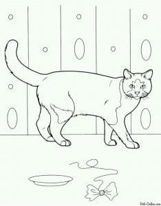 кошка раскраска для малышей