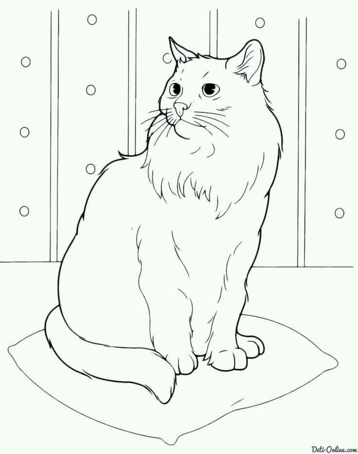 кошка рисунок для детей раскраска А4 - Рисовака