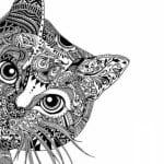 кошки pdf скачать раскраска