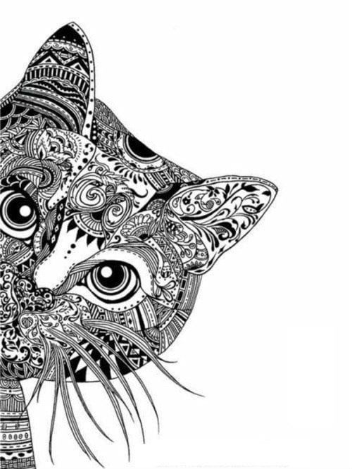 кошки pdf скачать раскраска - Рисовака
