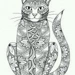 печатать раскраски кошки