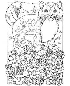 про кошек раскраски